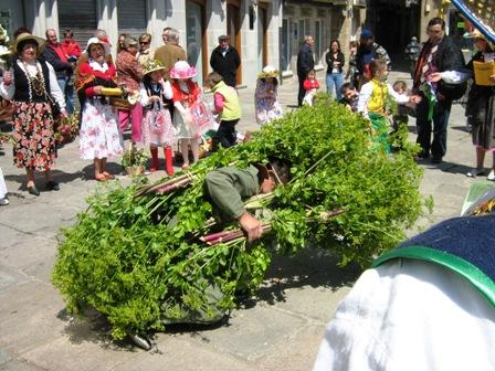 Fina Roca. Viveiro, maios 2009 021.jpg