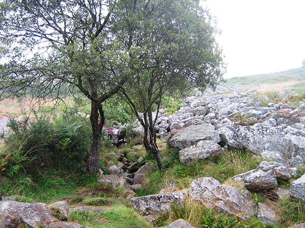 Fina Roca, Pedregal de Irimia. Agosto 2011 001.jpg